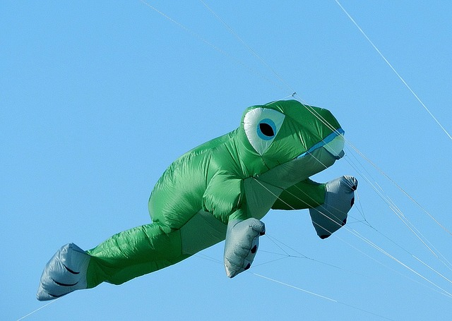 Free balloon dragons frog fly sky green blue