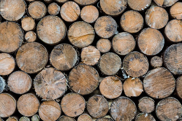 Free wood about spar brown winter cold stacked stack