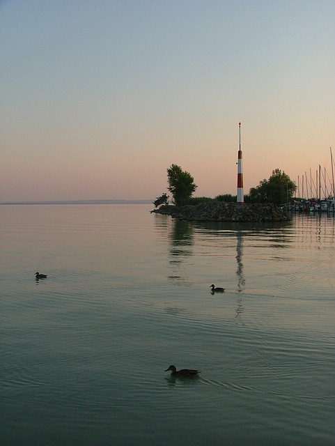 Free lake lake balaton water nature port dusk