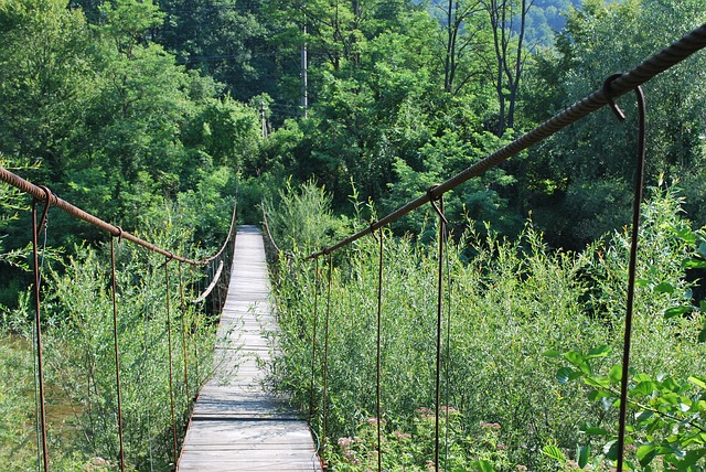 Free bridge small river suspension bridge trail