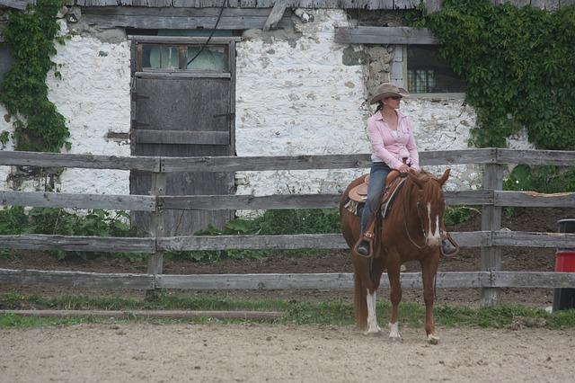 Free woman riding horse cowboy farm competition