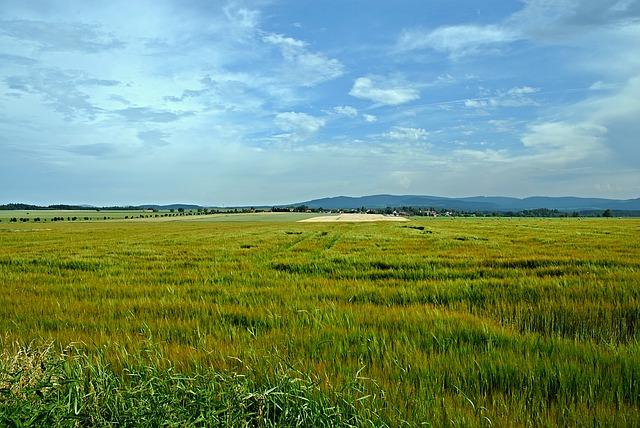 Free landscape meadow grass sky blue southern bohemia