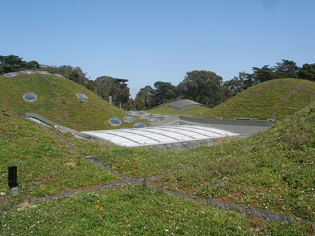 Free california academy of sciences green roof