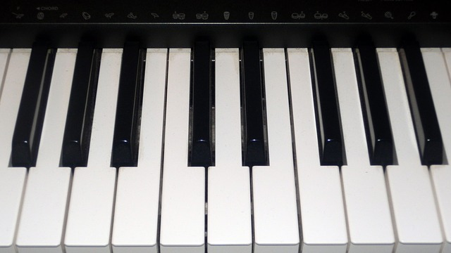 Free keyboard keys electronics piano