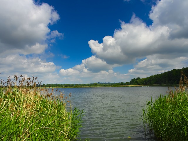 Free pond water clouds lake the nature of the nature