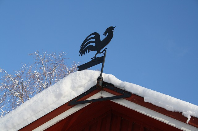 Free weather vane cock in the snow winter