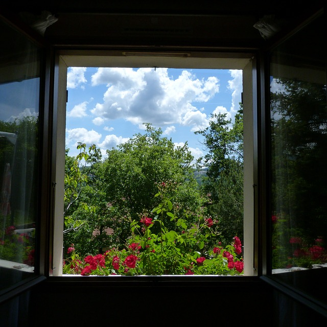 Free Photos: Landscape window opening flowers trees sky | claude alleva