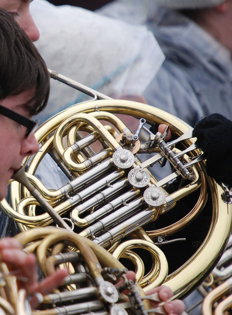 Free horn french horn instrument musical music outdoors