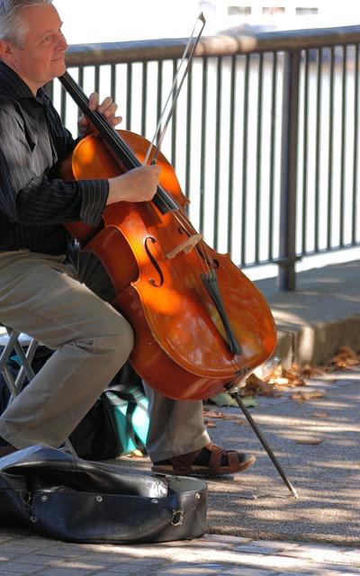 Free man cello musical string instrument busking