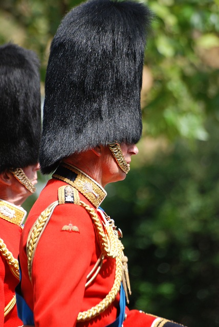 Free Photos: Man guard uniform red welsh guard bearskin | Steve Bidmead
