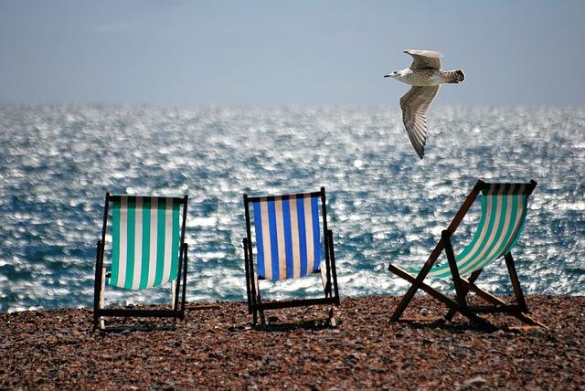 Free               deckchairs sea beach seaside seagull summer