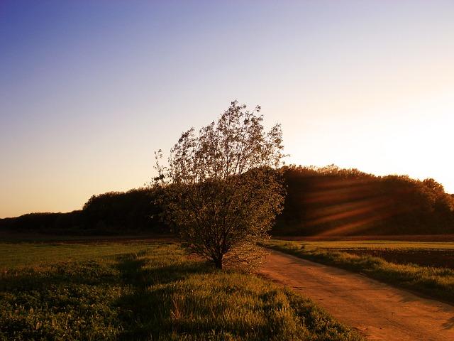 Free landscape nature sunset evening evening landscape