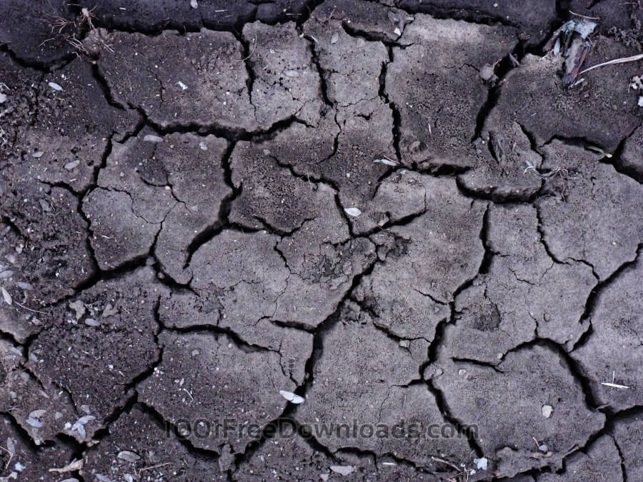 Free Textures: Cracked cement texture | Stone