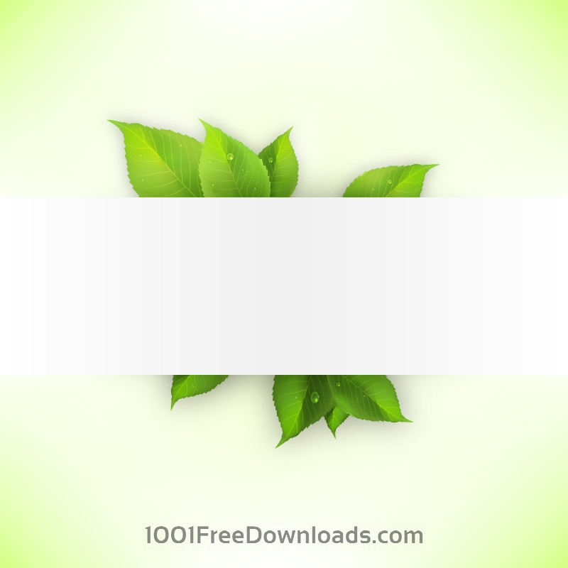 Free Realistic green leaves banner