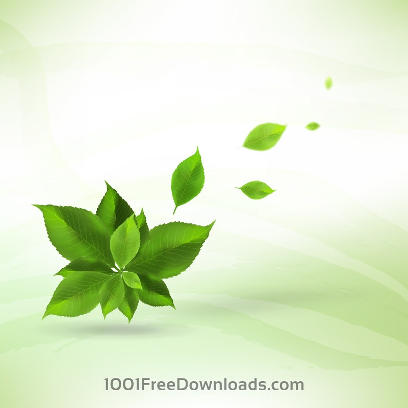 Free Realistic leaves background