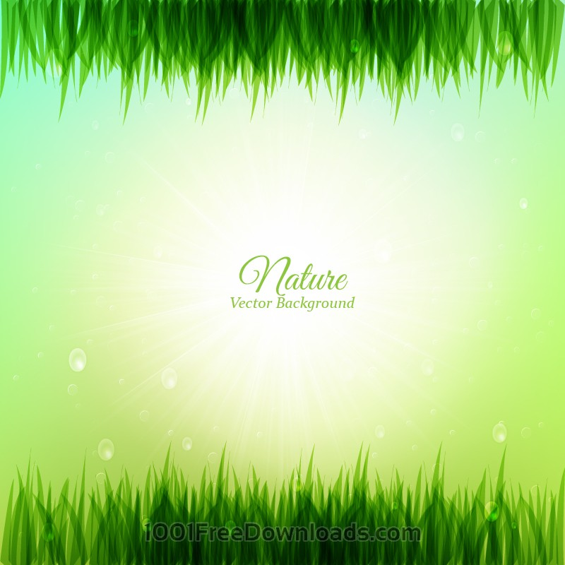Free Vectors: Grass illustration | Abstract