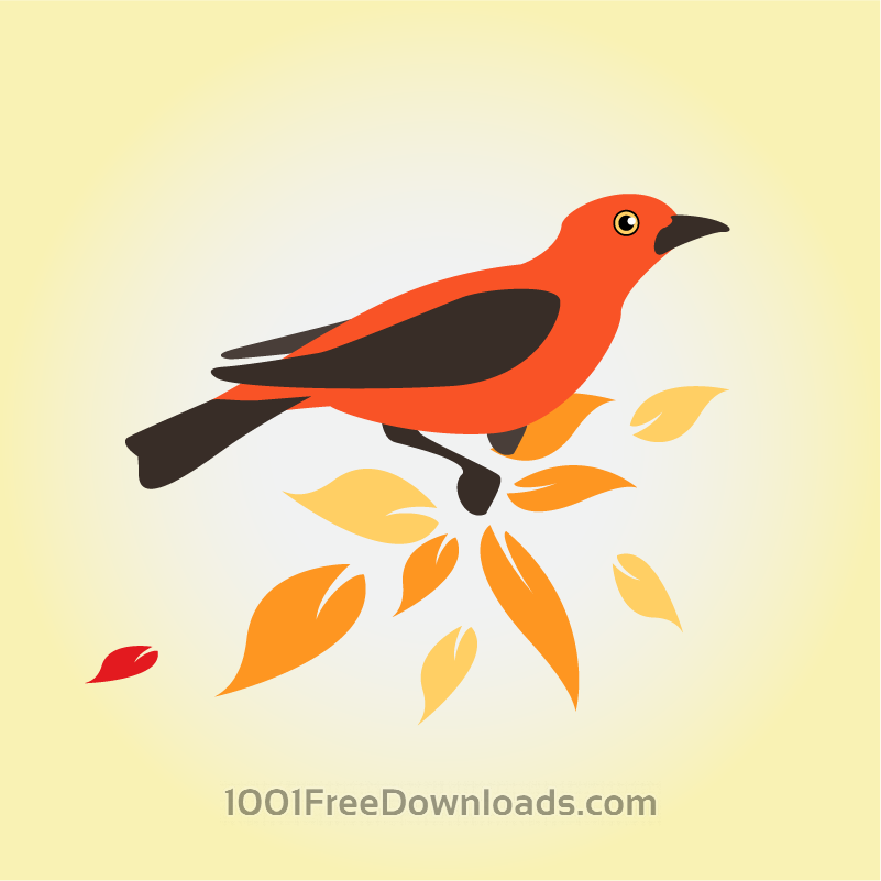 Free Vectors: Colorful bird | Animals