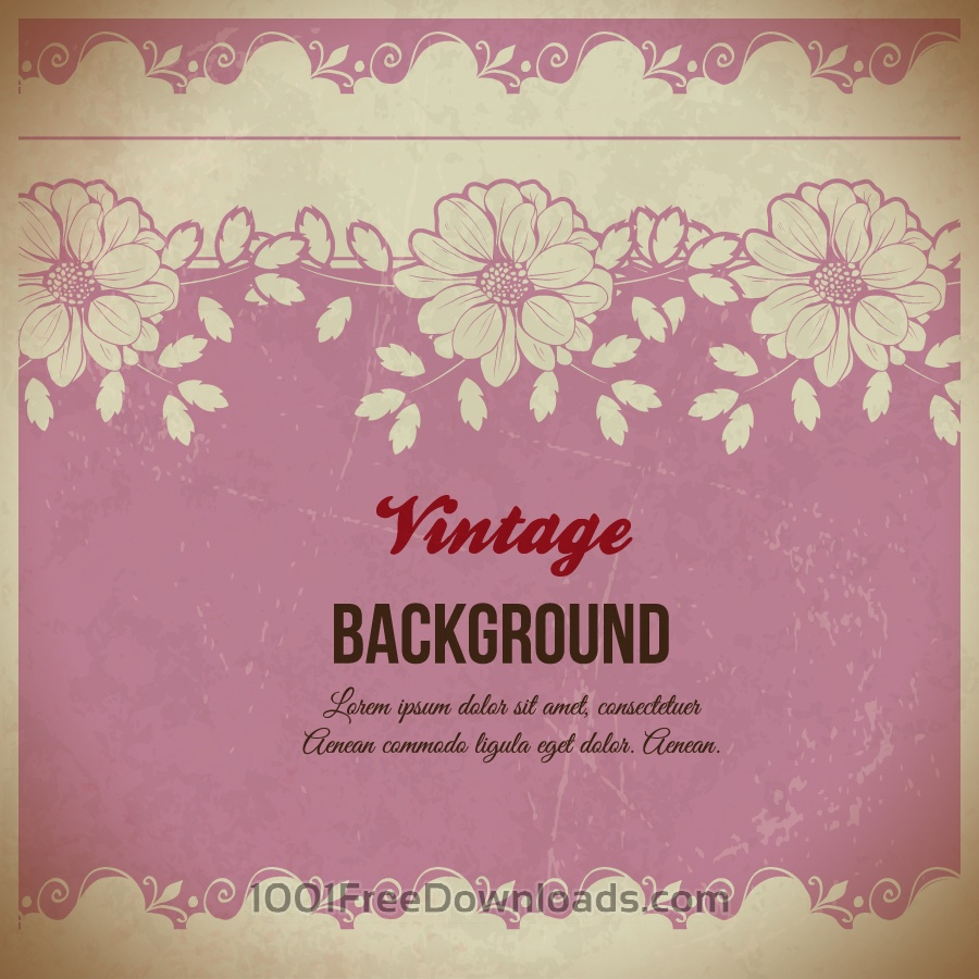 Free Vintage floral illustration with flowers , lace and typography
