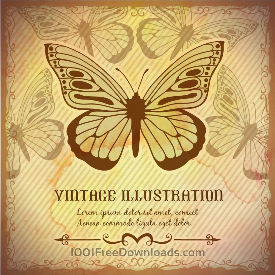 Free Vectors: Vintage background with butterfly | Backgrounds