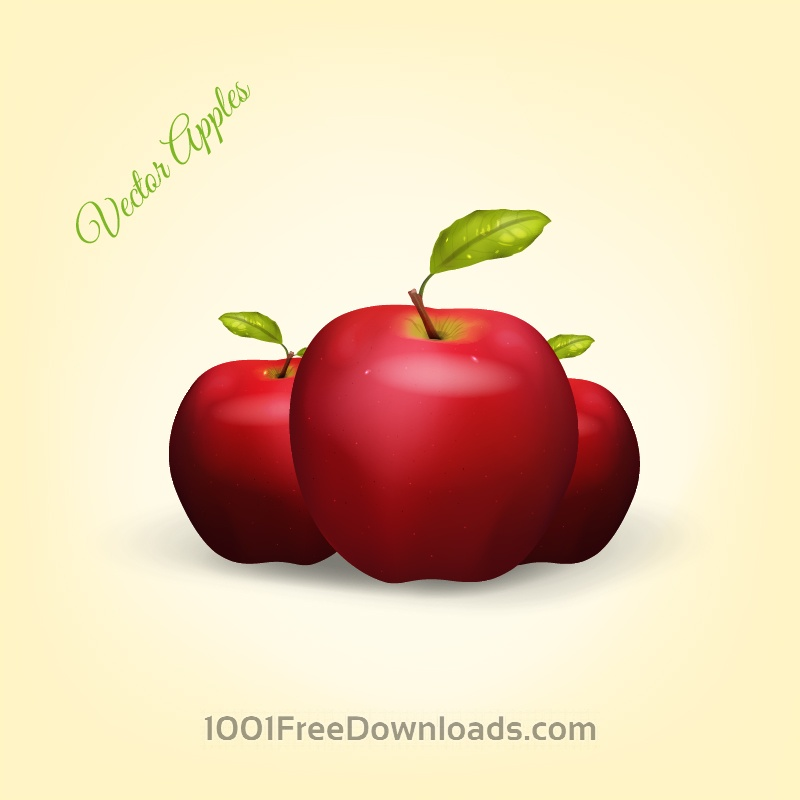 Free Vectors: Realistic Vector Apples | Nature