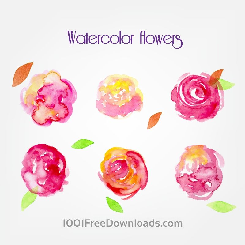 Free Vectors: Watercolor vector flowers | Flowers