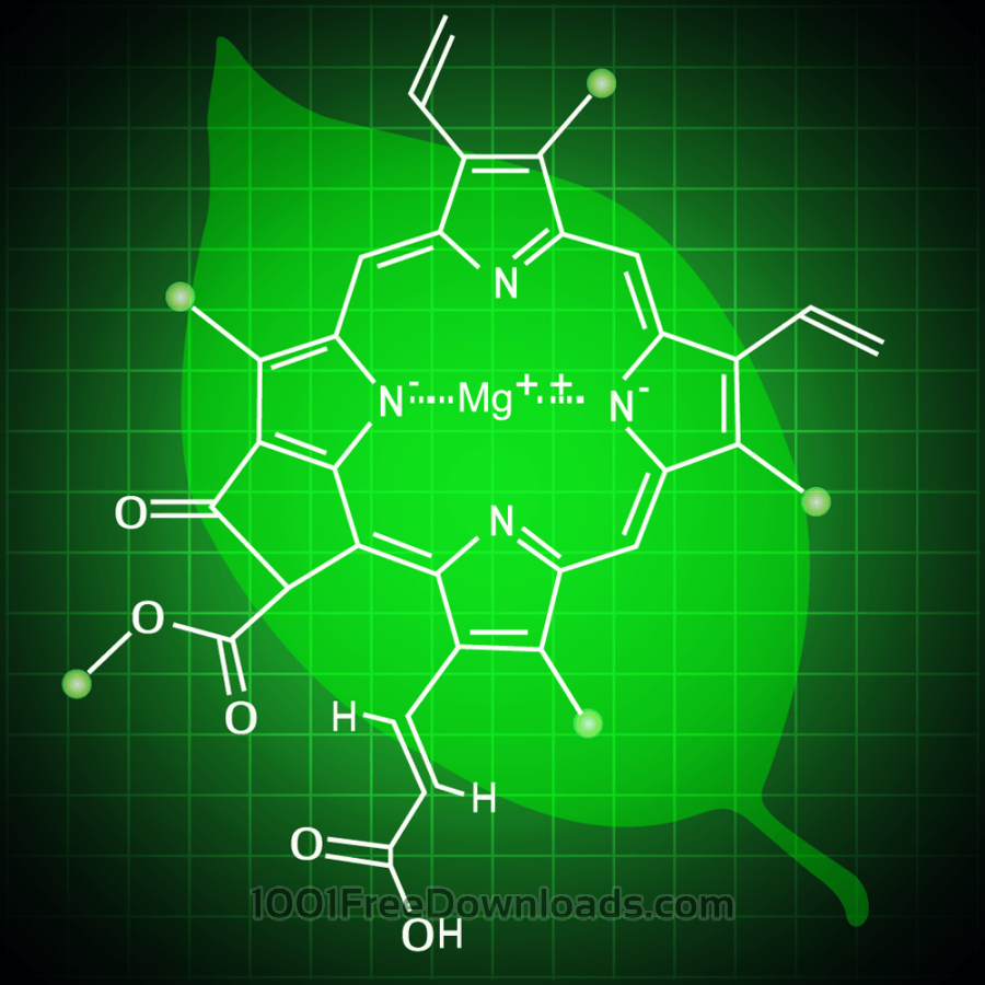 Free Chlorophyll background