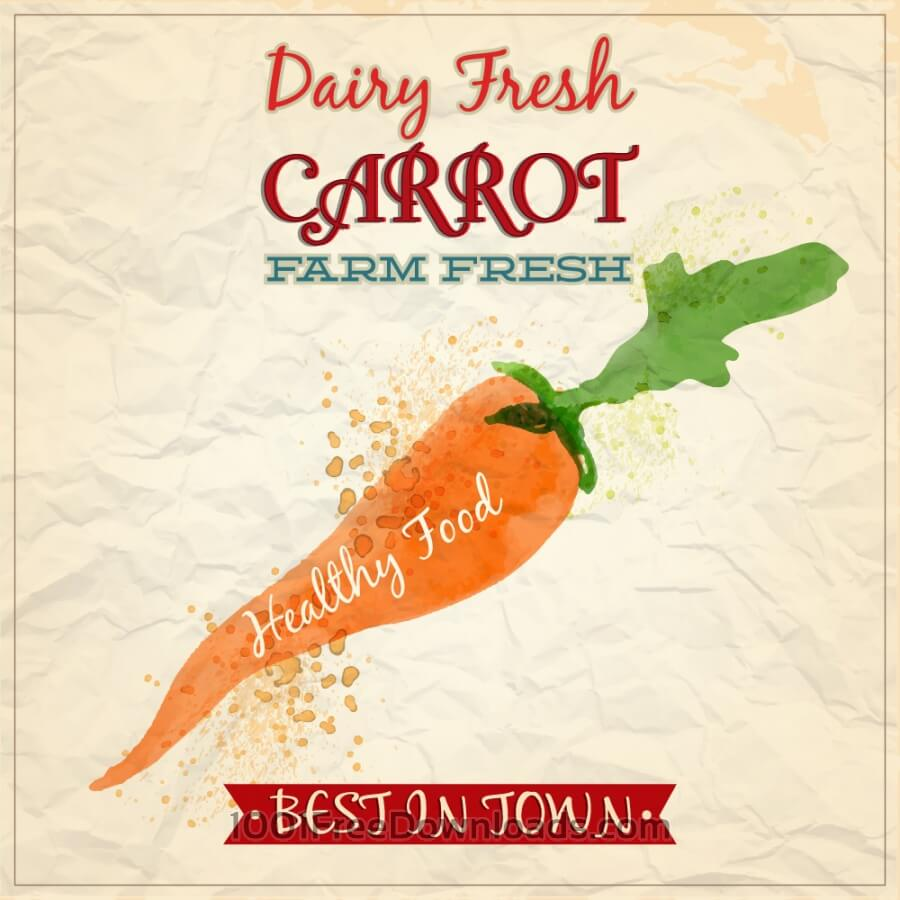 Free Vectors: Vintage watercolor carrot with typography | Nature