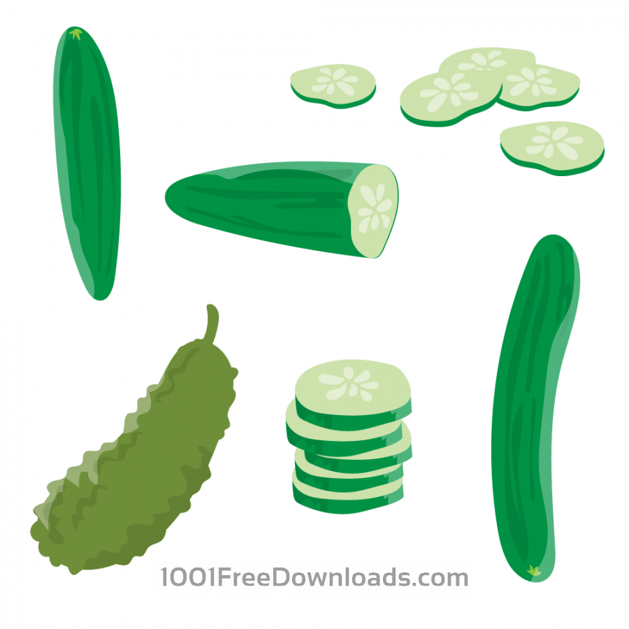 Free Vectors: Fresh Cucumber Vector | Abstract