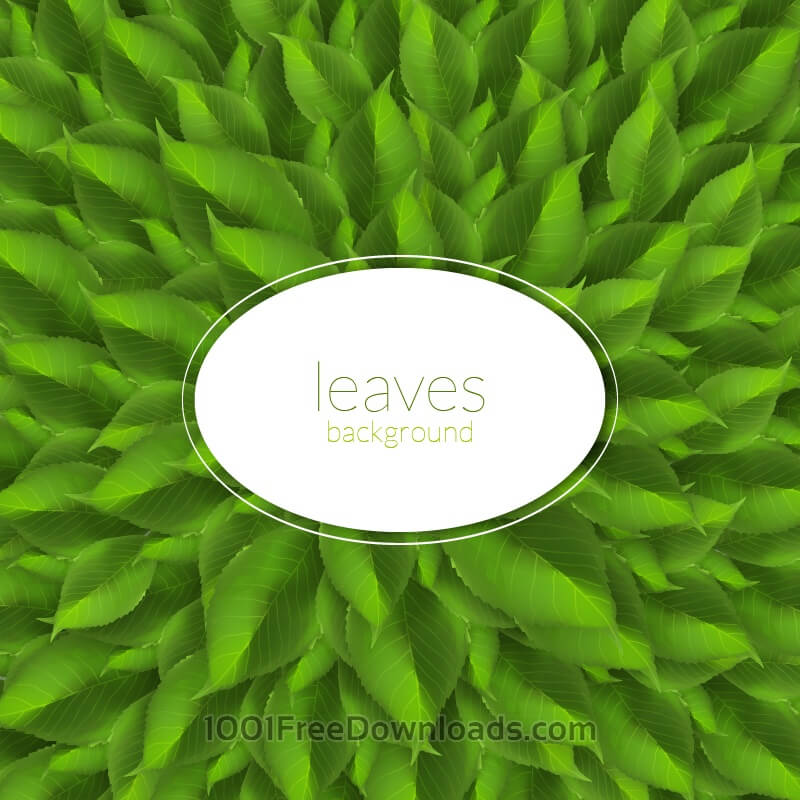 Free Green leaves texture with modern label