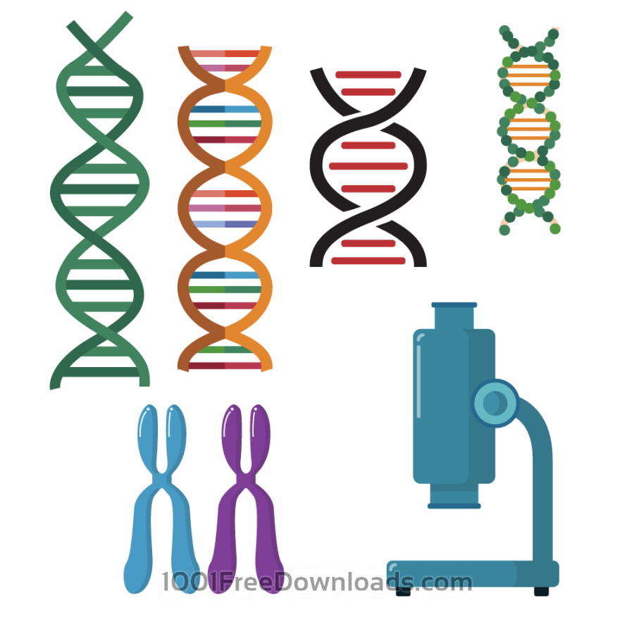 Free DNA double helix scientific vector set