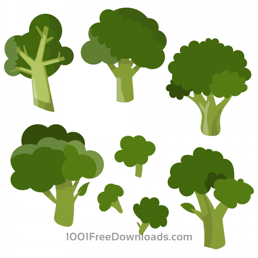 Free Fresh broccoli vector set