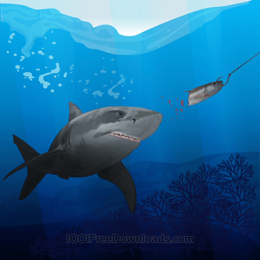 Free Vectors: Hunting shark | Animals