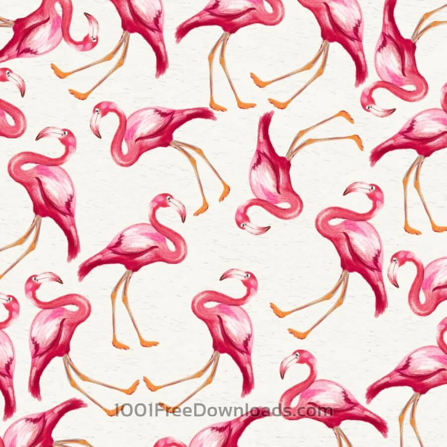 Free Watercolor background with flamingos