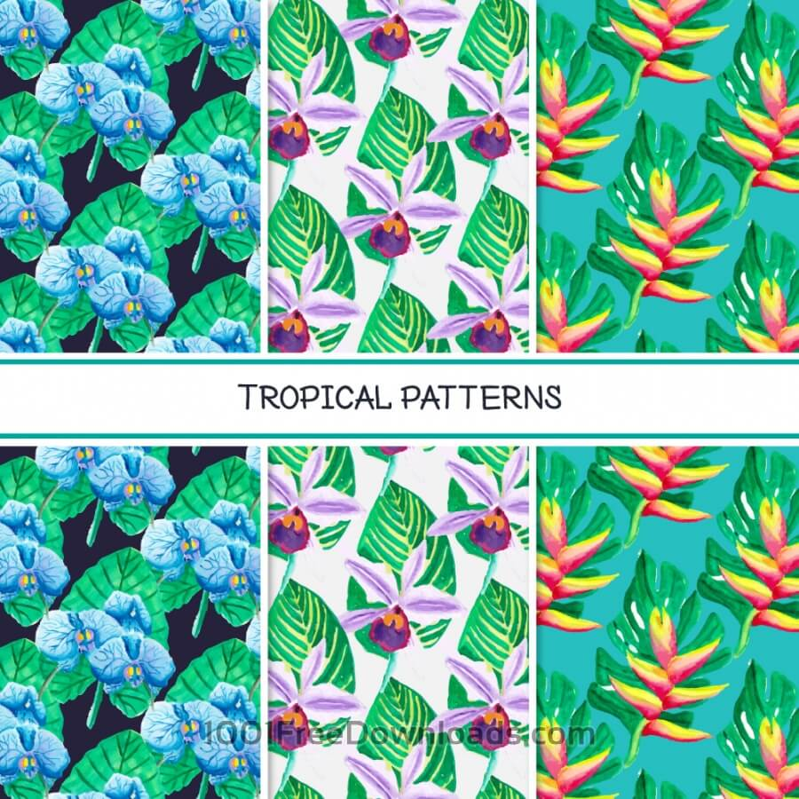 Free Vectors: Tropical summer pattern collection | Patterns