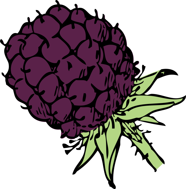 Free blackberry