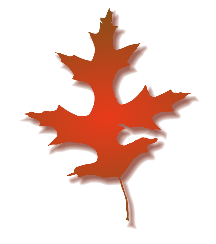 Free Oak Leaf - Autumn 2
