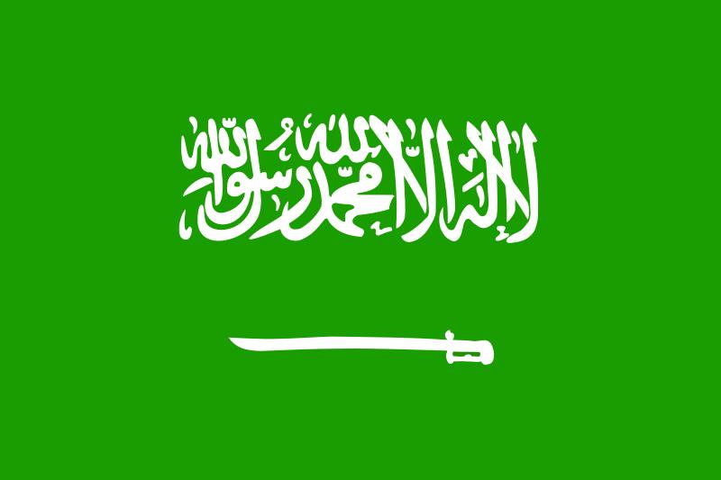 Free saudi arabia