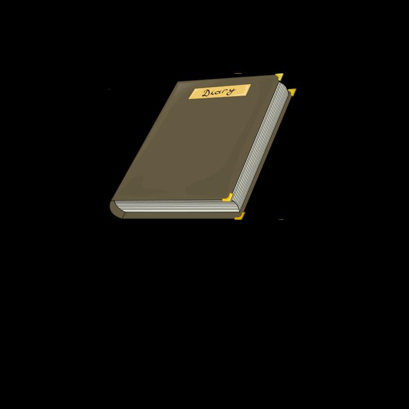 Free diary costea bogdan 01
