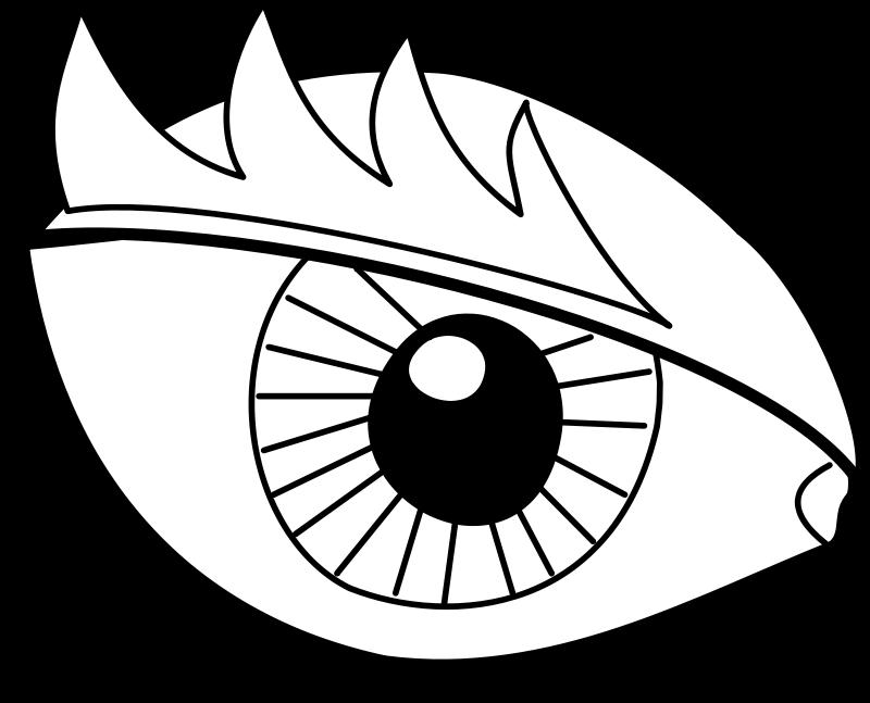 Free Eye / Oeil