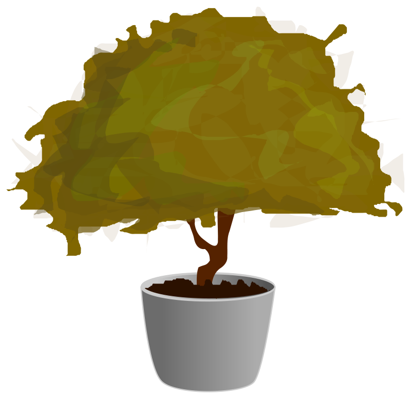 Free Planta / Plant