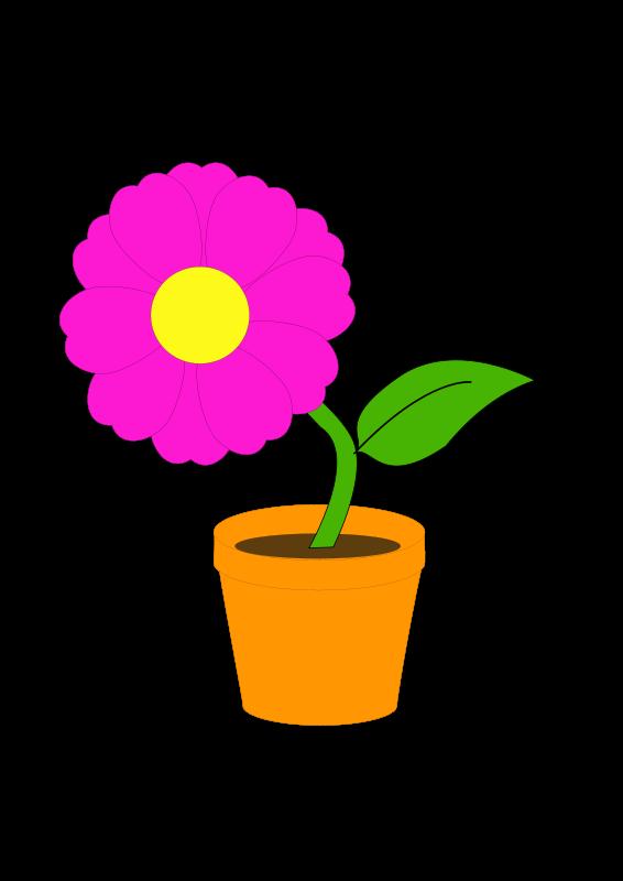 Free flowerandpot daniel ste r