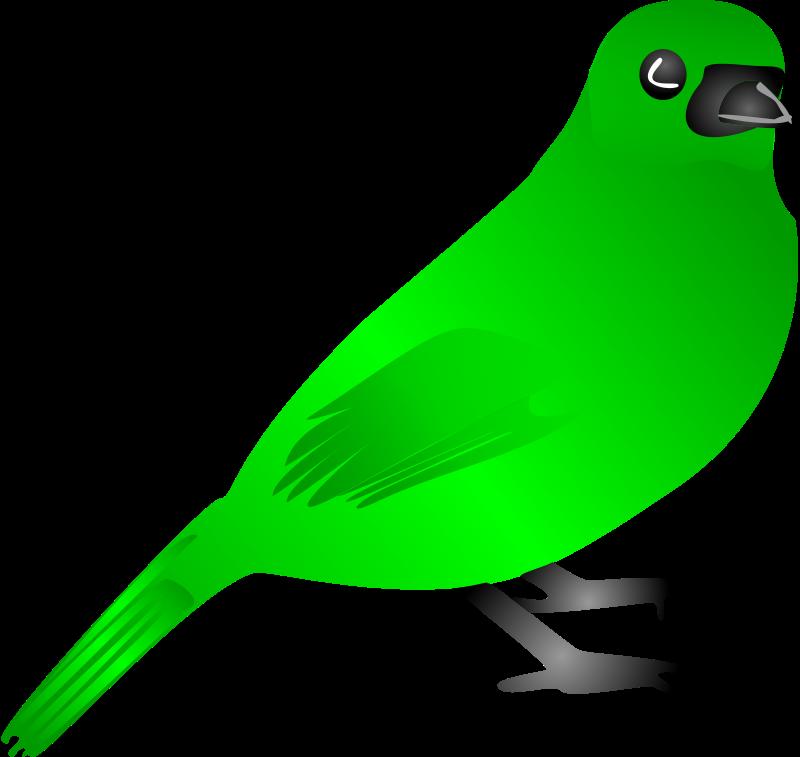 Free Bird