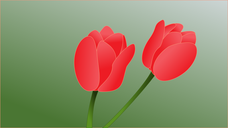 Free tulip