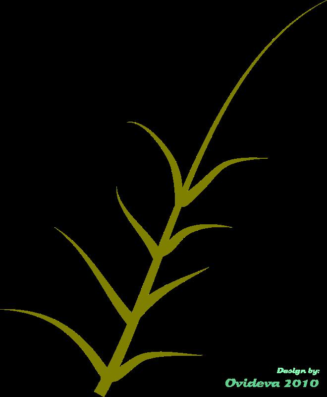 Free green plant