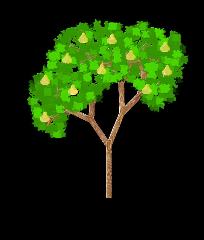 Free Pear Tree