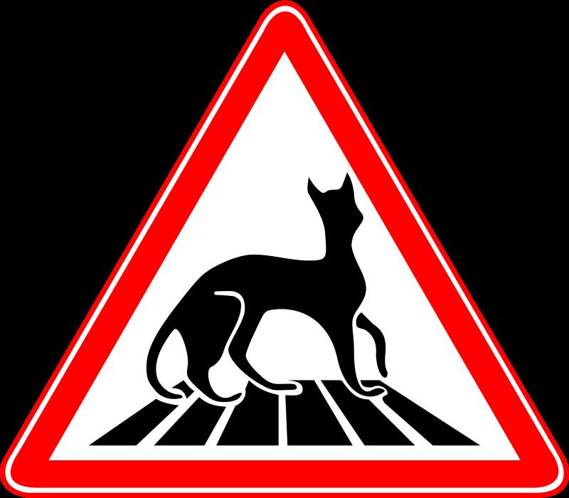 Free Carefully - Cats!