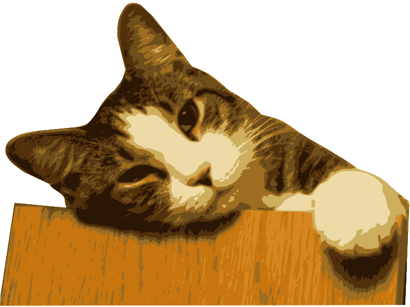 Free Relaxed cat (bg removed)