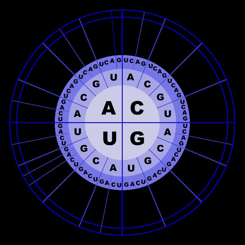 Free Genetic Code RNA