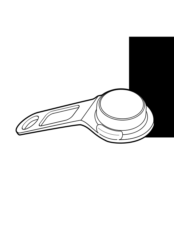 Free Touchmemory key