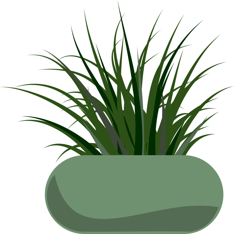 Free Potted Grass